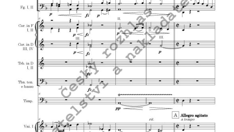 Symfonie d moll - Vilém Blodek
