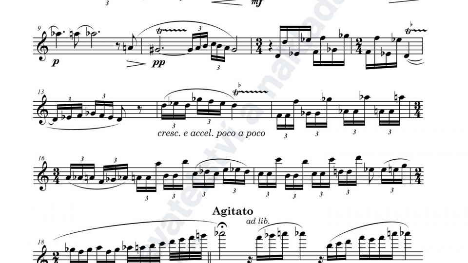 Únos Šeherezády pro flétnu a klavír - Adam Skoumal